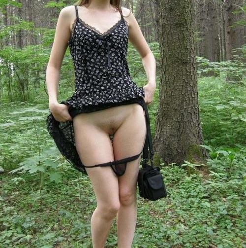 Exhibe en forêt