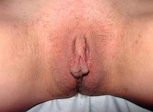 grandes lèvres sexes